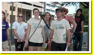 Compost Cats