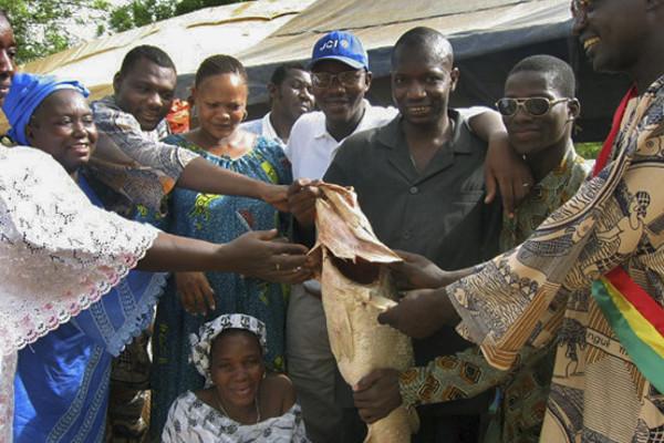 Mali, 2009