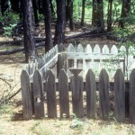 The African-American Grave Markers of McNary
