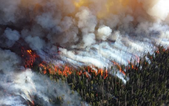 The Culture of Wildfire: Perceptions, Practices, Policies