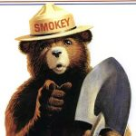 ARTIFACT: Smokey Bear